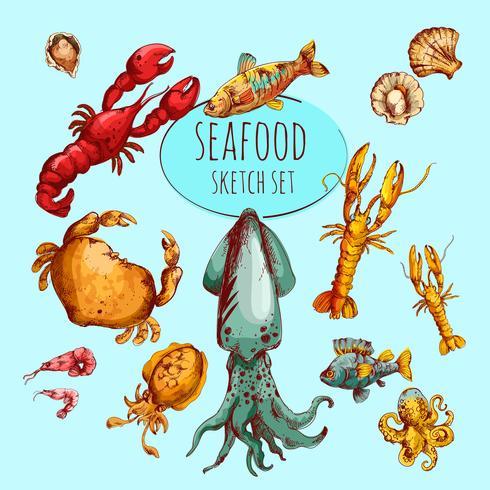 Schizzo di frutti di mare colorato vettore