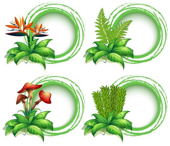 Modelli di bordo con foglie e fiori vettore