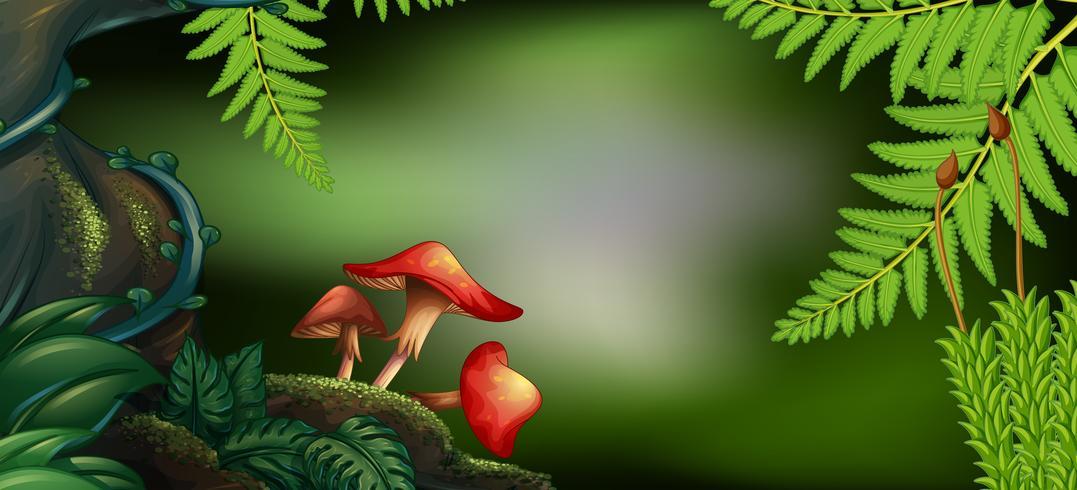 Scena di sfondo con funghi nella foresta vettore