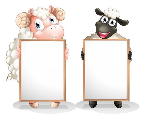 Due pecore con tavole vuote vettore