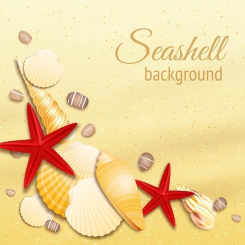 Poster di sfondo sabbia di conchiglia vettore