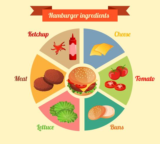 Ingredienti dell'hamburger infographic vettore