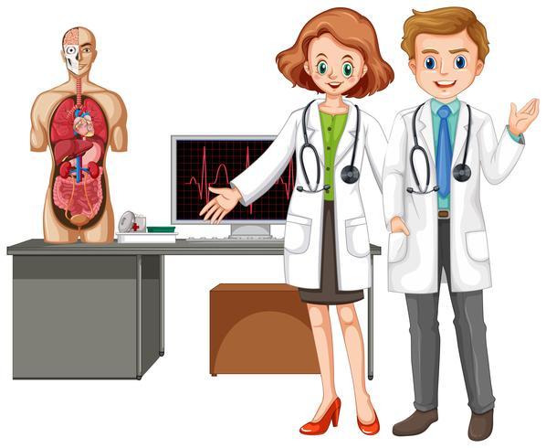 Medici con anatomia umana su sfondo bianco vettore