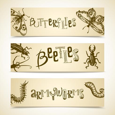 Set di banner di insetti vettore