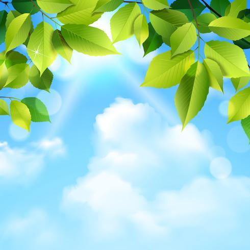 Sfondo di foglie e nuvole vettore