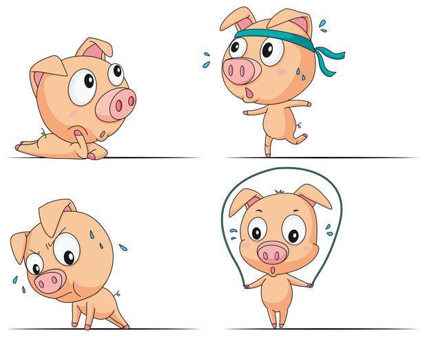 Piccolo maiale facendo diversi esercizi vettore