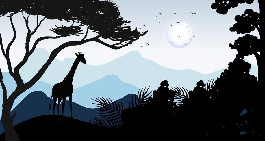 silhouette giraffa e scena della foresta vettore