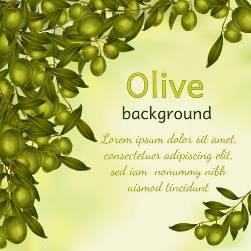 Sfondo olio d'oliva vettore