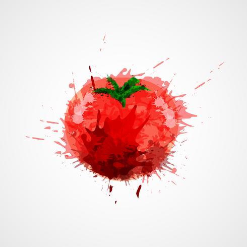 Pomodoro macchiato isolato vettore