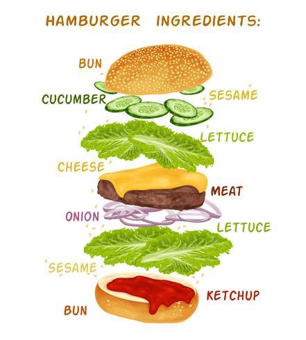 Set di ingredienti per hamburger vettore