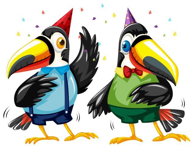 Due uccelli Tucano ballare alla festa vettore