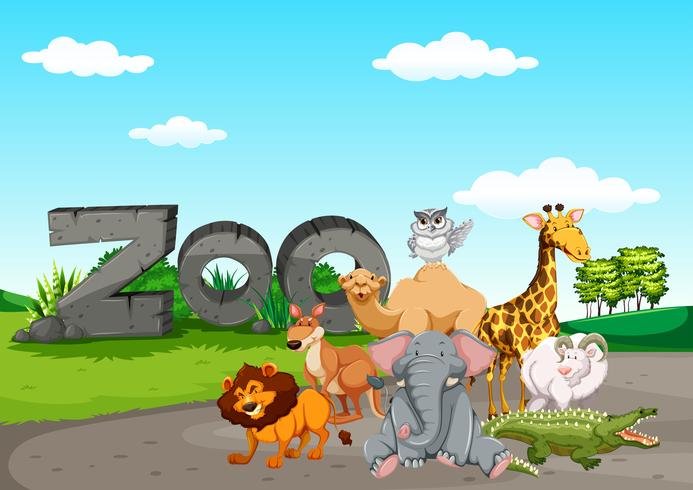 Animasl selvaggio allo zoo vettore