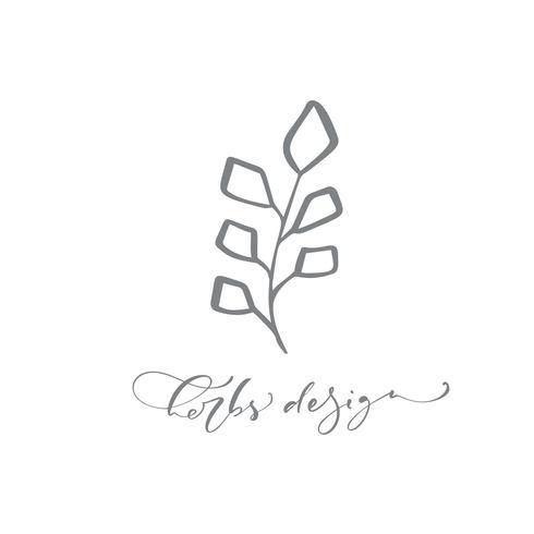 Erbe Design testo. Logo vettoriale alla moda di bellezza disegnata a mano scandinava floreale.