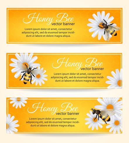 Set di banner di ape vettore