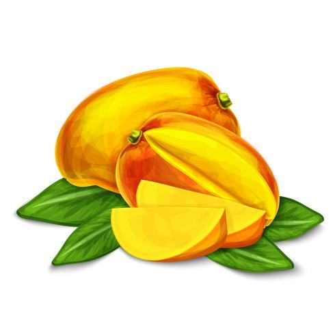Poster o emblema isolato mango vettore