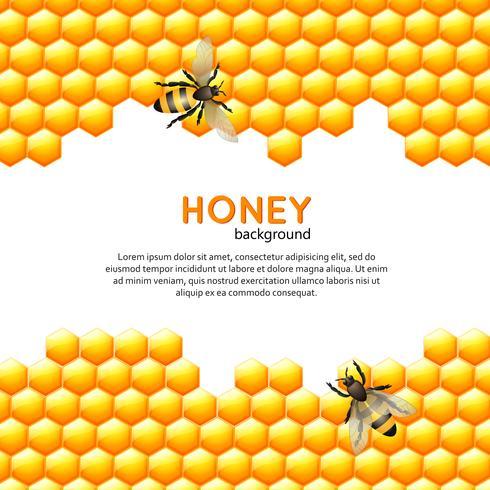 Sfondo di miele delle api vettore