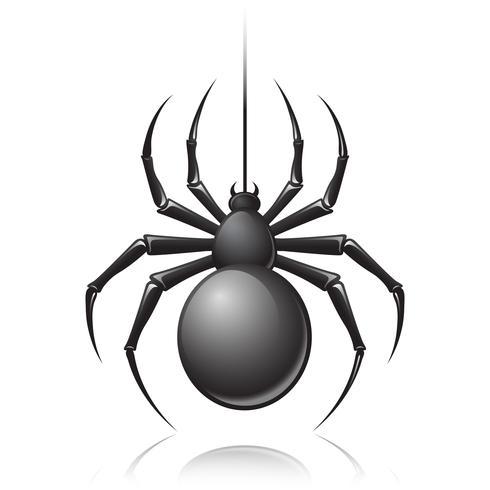 Emblema di ragno nero vettore