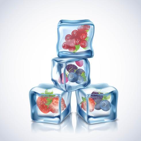 Cubetti di ghiaccio con frutti di bosco vettore