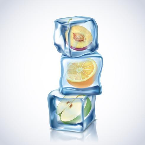 Cubetti di ghiaccio con frutta vettore