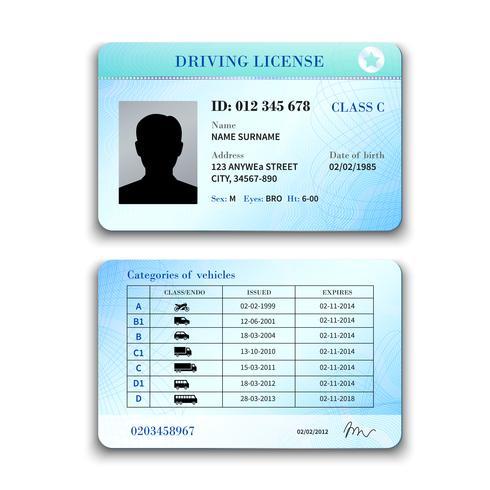 Illustrazione della patente di guida vettore