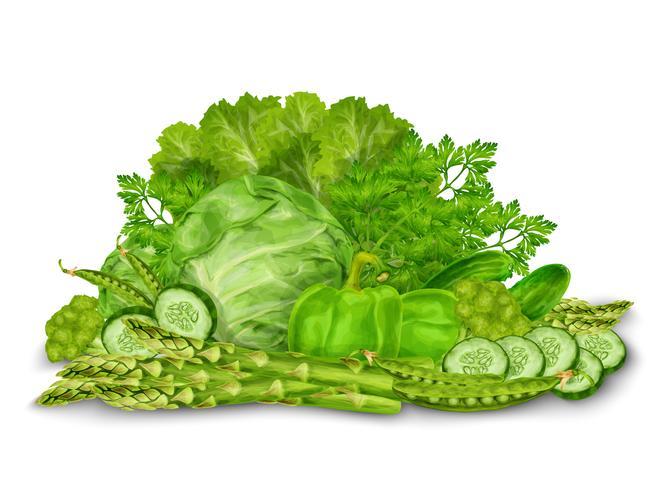 Le verdure verdi si mescolano su bianco vettore