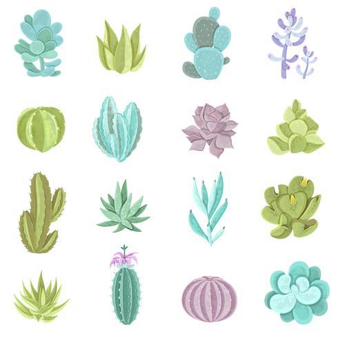 Set di icone di cactus vettore