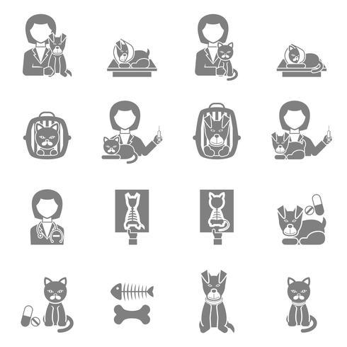 Set di icone nere visita clinica veterinaria vettore