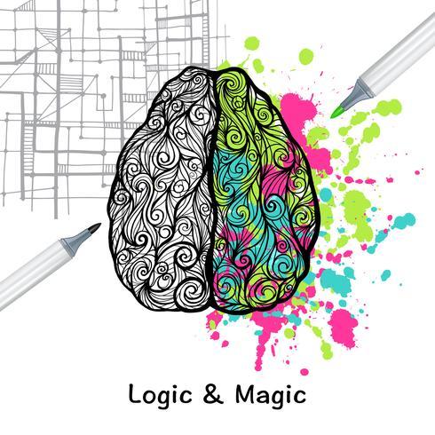 Cervello sinistro e destro vettore