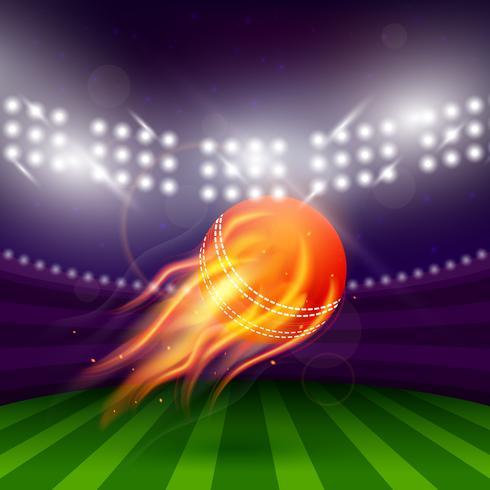 stadio della notte di cricket vettore