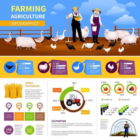 Agricoltura infografica piatta vettore