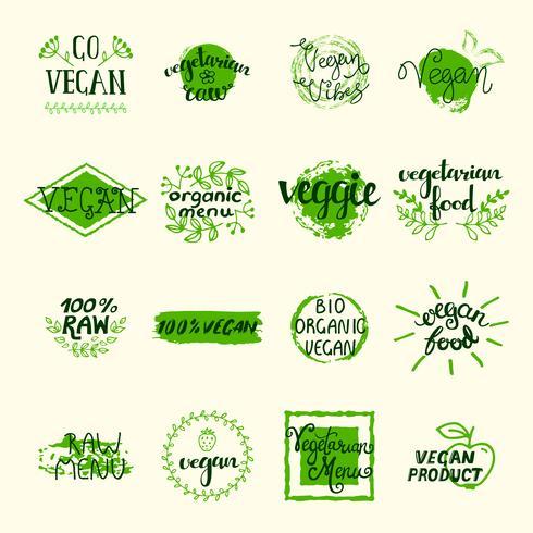 Set di elementi vegani vettore