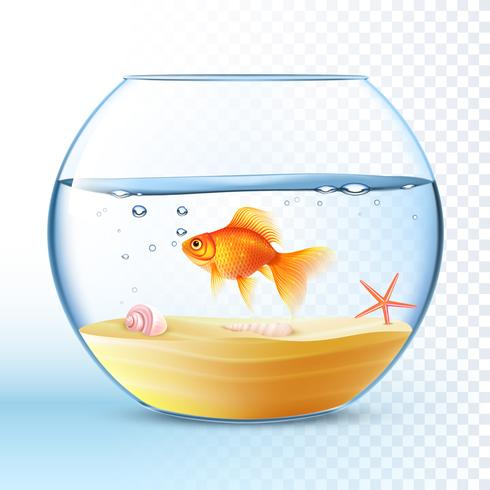 Golden Fish In Round Bowl Poster vettore