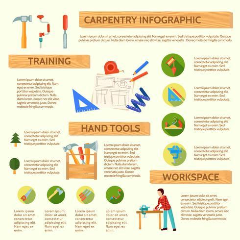 Set Infografica carpenteria vettore