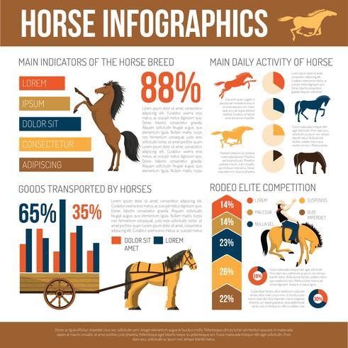 Poster piatto di presentazione infografica di razze di cavallo vettore