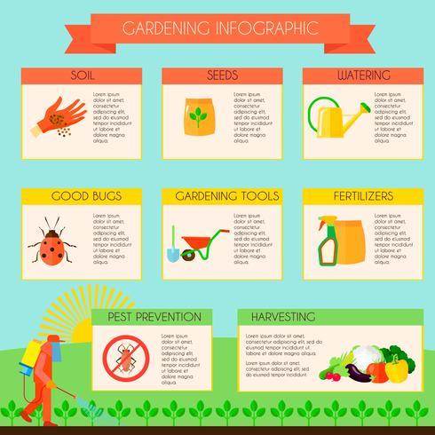 Set infografica di giardinaggio vettore