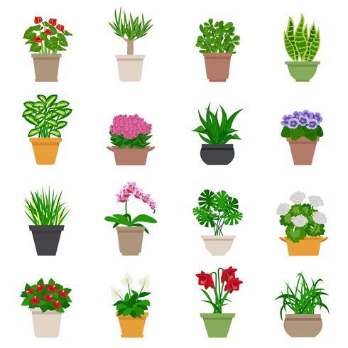 Set di icone houseplant vettore