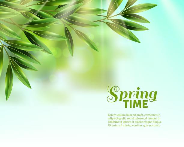 La primavera lascia sfondo vettore