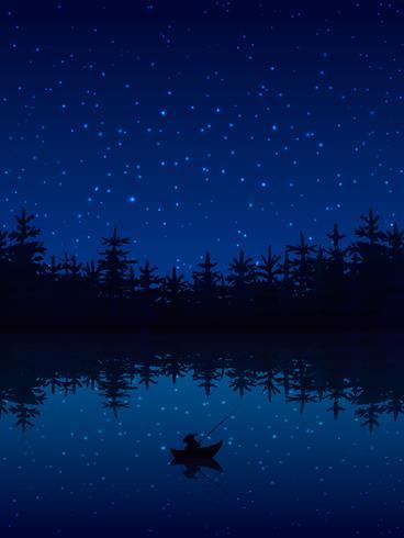 Pesca all'illustrazione di notte vettore