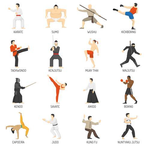 Set di icone piane decorative di arti marziali vettore