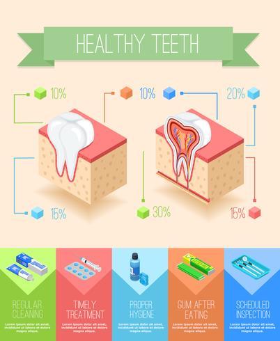 Poster Infographic di cura orale vettore
