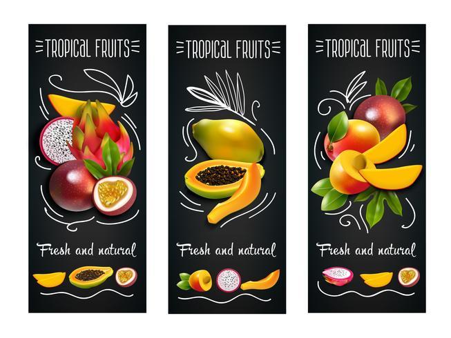 Insieme di etichette della lavagna di frutti tropicali vettore