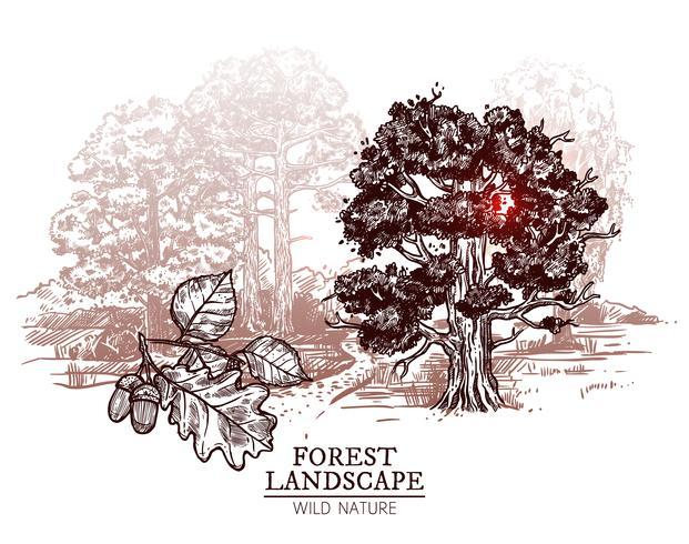 Illustrazione del paesaggio dell'albero di schizzo vettore