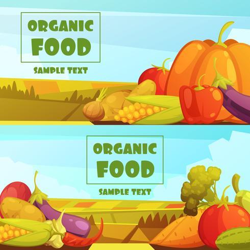 Set di banner retrò di cibo biologico 2 vettore