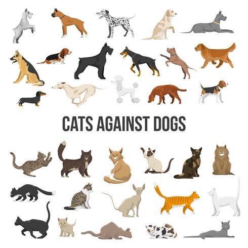 Razza Set Di Cani E Gatti vettore
