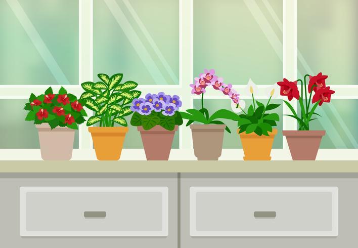 Illustrazione di sfondo di piante d'appartamento vettore