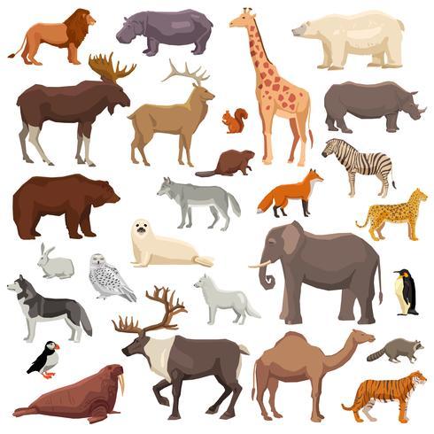 Grande set di animali vettore