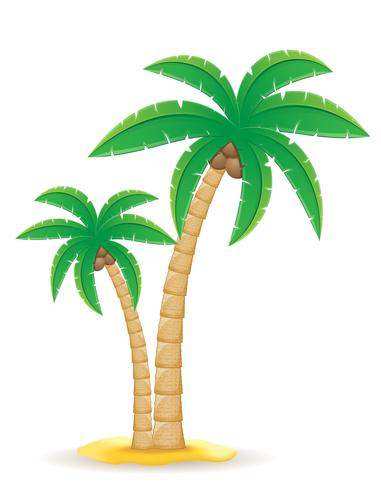 illustrazione vettoriale di palma albero tropicale