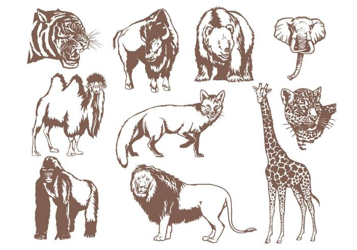 Pacchetto di animali selvatici vettore