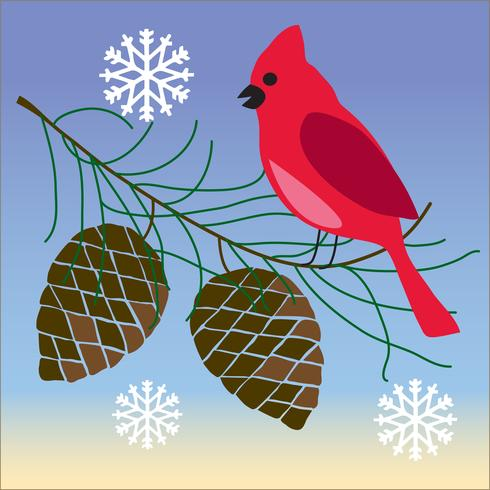 uccello cardinale sul ramo di pigne con fiocchi di neve vettore