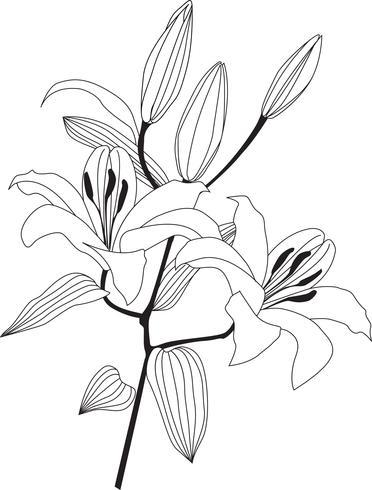 Bouquet di fiori. Cornice floreale Biglietto di auguri fiorito. Arredamento estivo vettore